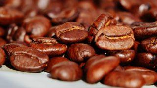 コーヒー豆の種類と特徴とは?コーヒー好きなら知りたい基礎知識