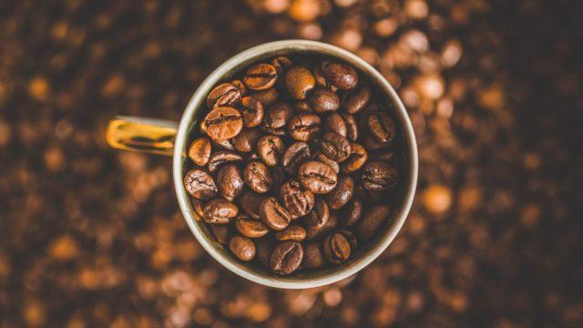 コーヒー豆は腐るの?具体的な賞味期限はどのくらいなのか【重要】