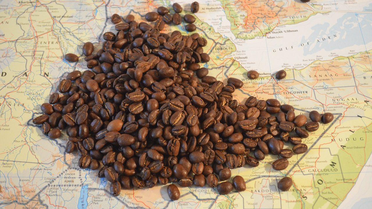 エチオピアコーヒーの特徴とは?豆の種類から産地まで幅広く解説