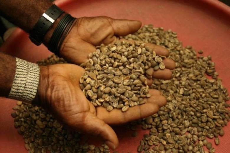 コーヒー豆の買い方①:挽いていないコーヒー豆を買う