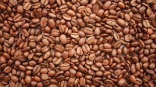 コーヒー豆の鮮度はかなり重要