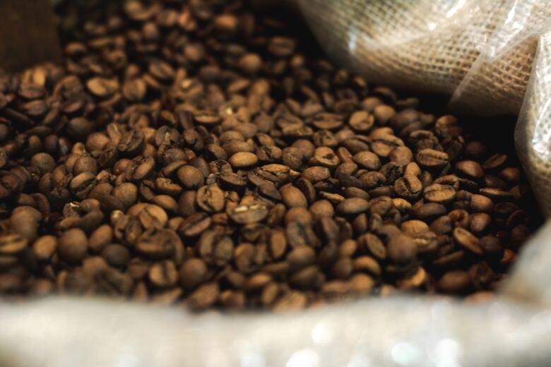コーヒー豆の栽培