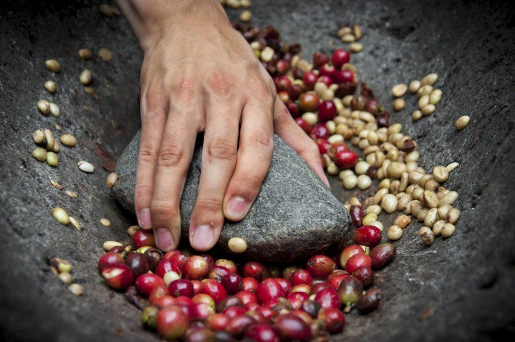 ベトナムコーヒーの特徴