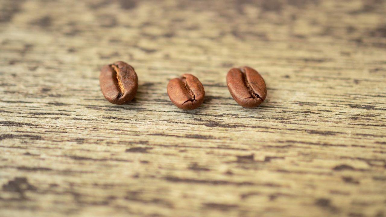 コーヒーの欠点豆とは?種類から焙煎後の見分け方まで徹底解説