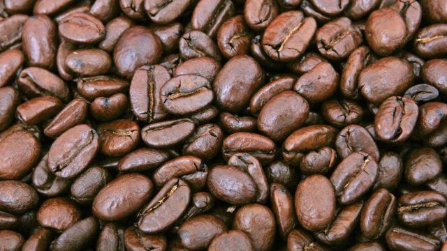 コーヒー豆の違いとは?種類から味わいの特徴まで徹底解説【決定版】