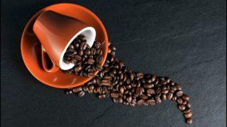 コーヒー豆の3大原種の1つであるアラビカ種