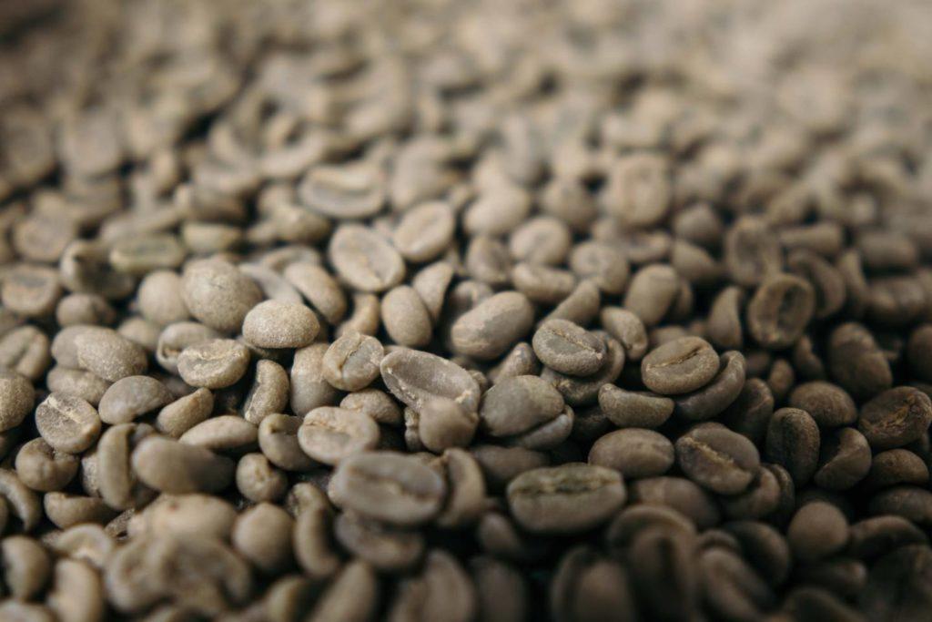 コーヒーの生豆とは