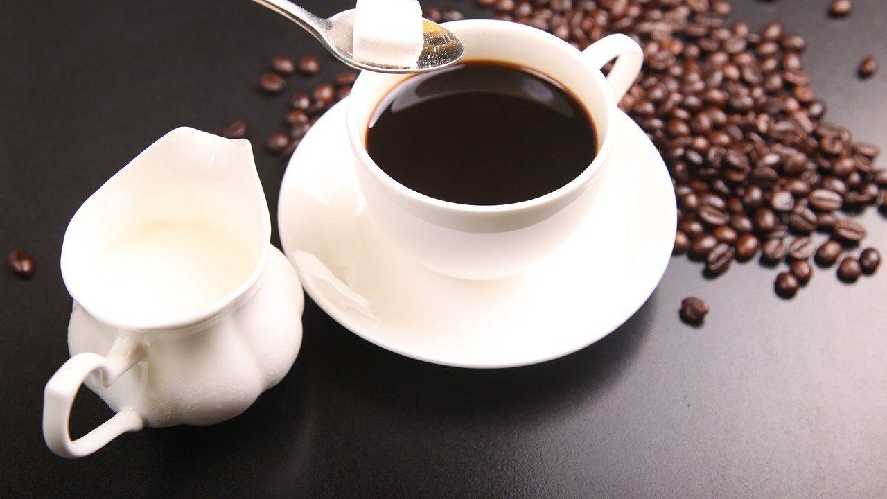 コーヒーミルクのおすすめ6選!まろやかなコーヒーを楽しもう【2020】