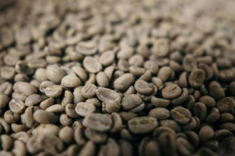 コーヒー生産国は世界で60ヶ国以上もある