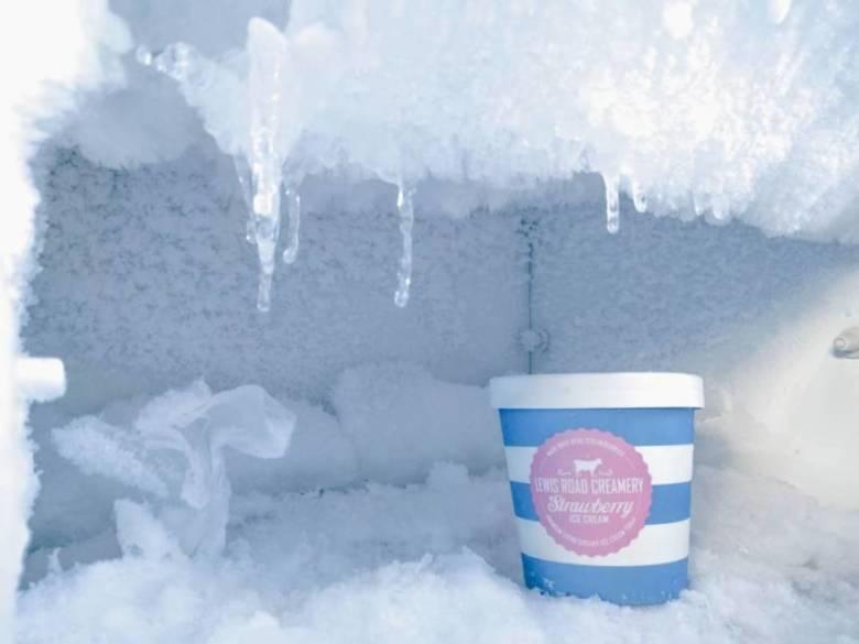 コーヒー豆を冷凍保存する際は冷凍庫を使う【保存方法を解説】