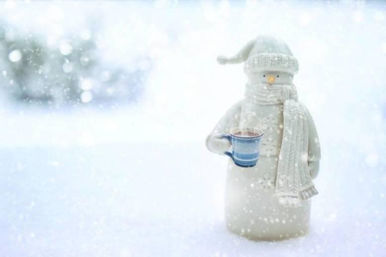 コーヒー豆を長く保存する場合は冷凍して鮮度を保とう!