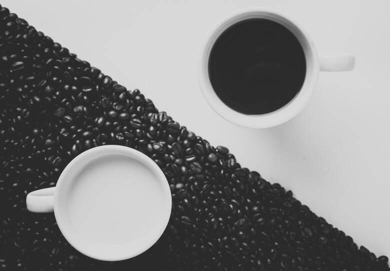 コーヒーフレッシュのおすすめ4選