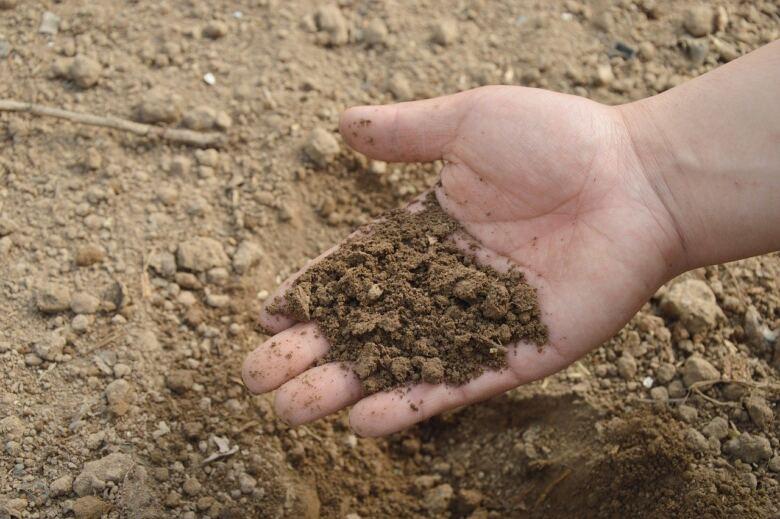 1. 「肥料として使う」